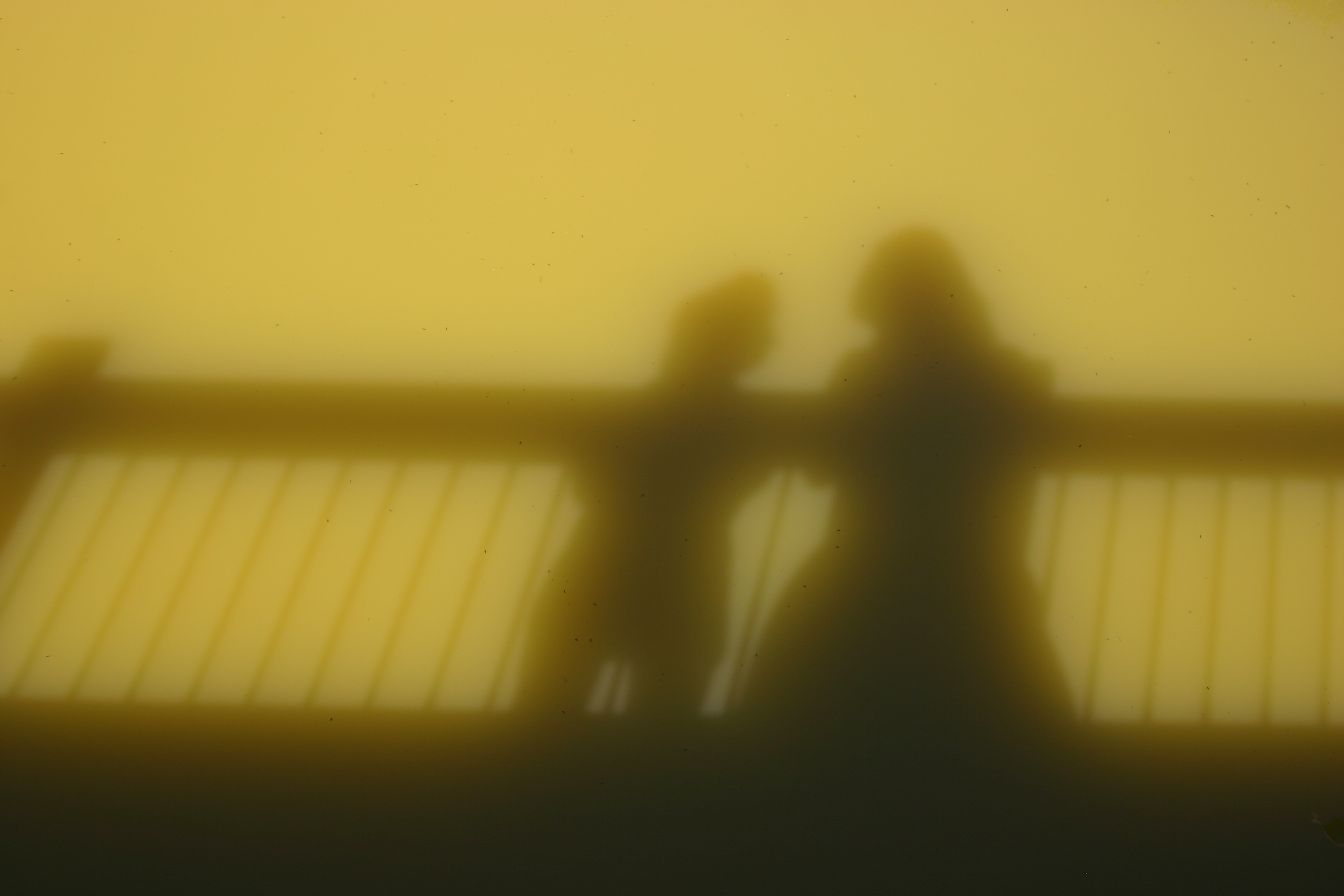 Shadows of two people on a bridge reflect in murky green water.
