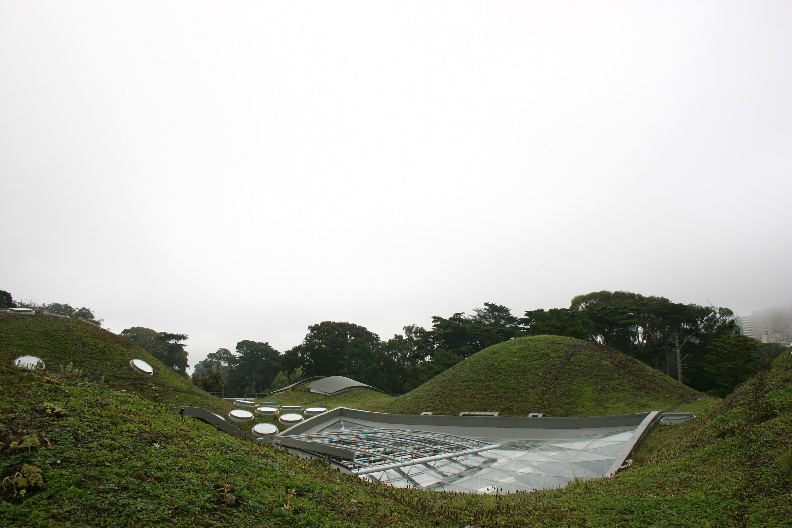 "California Academy of Sciences ""living roof,"" rolling hills with round skylights."