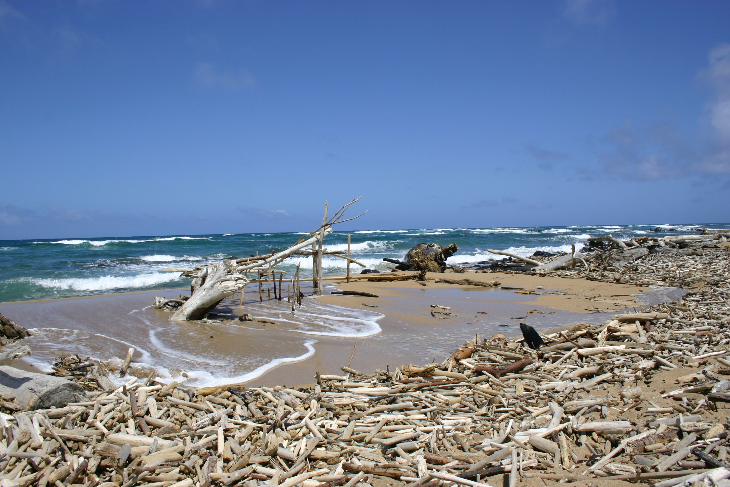 Driftwood structure at the mouth of the Wailua River, where it meets the Pacific Ocean.