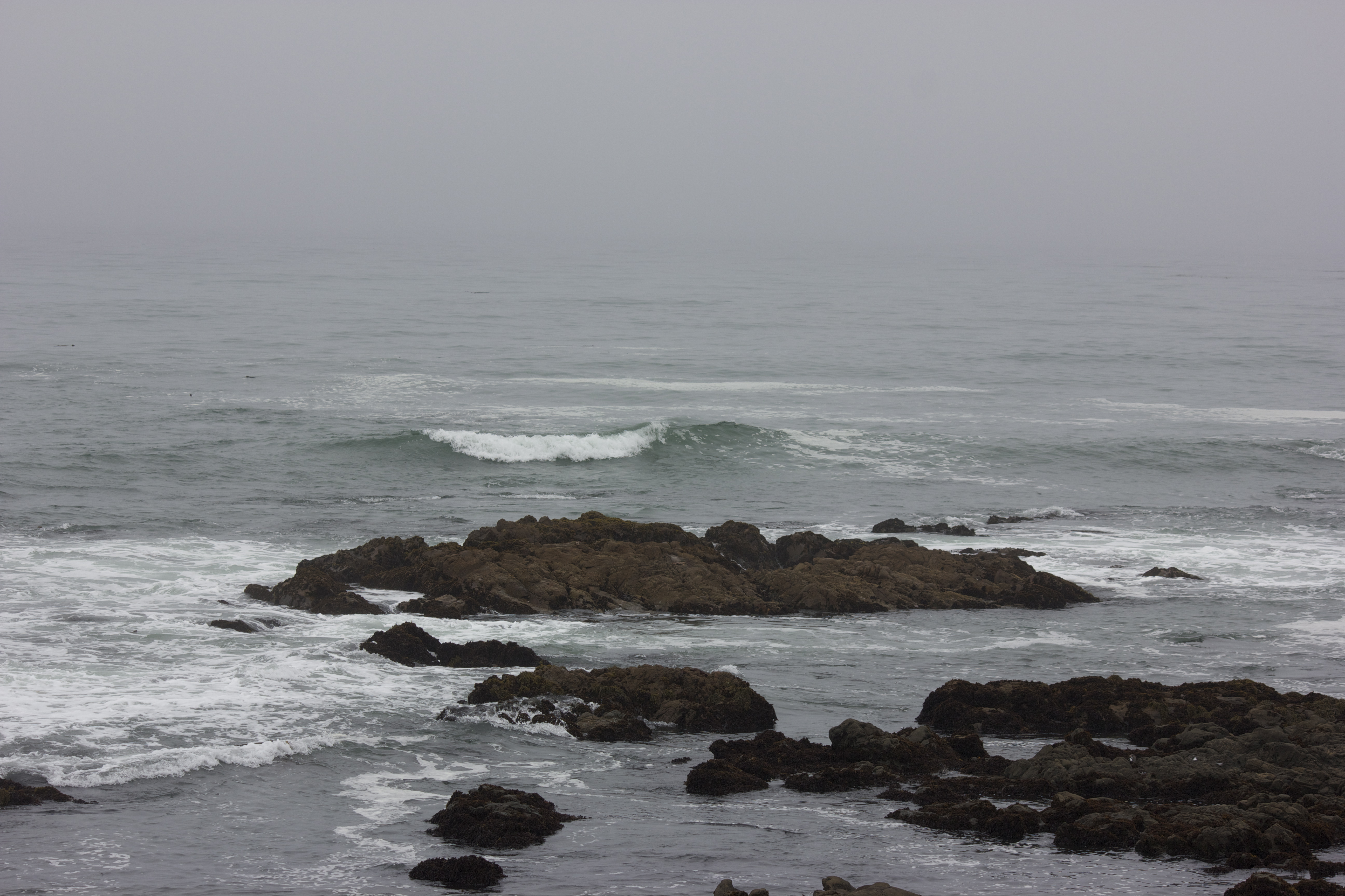 A small wave crests near the rocky shore, against a foggy blurred horizon.