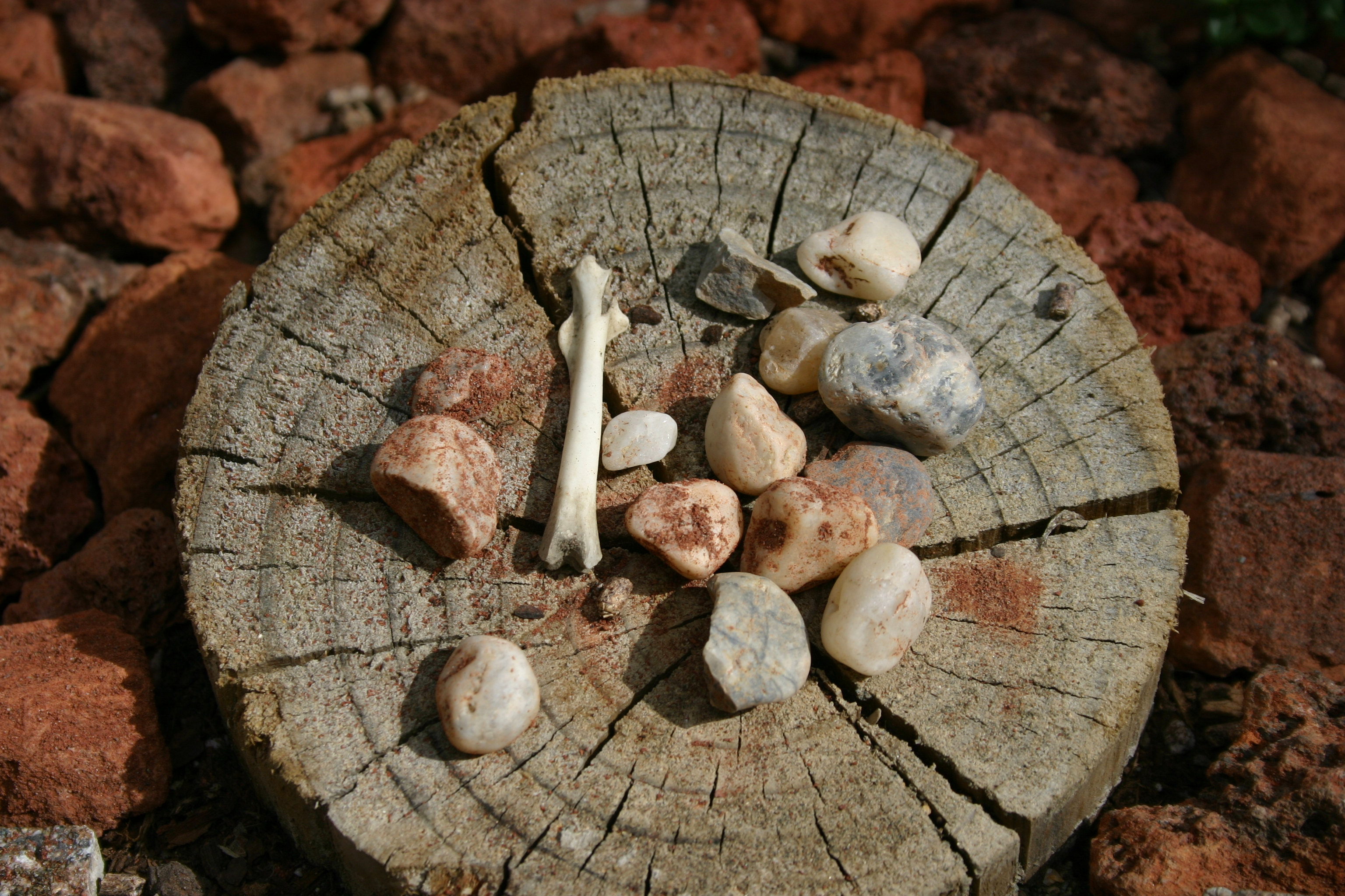 A collection of bones and stones on a round post surrounded by red rock.