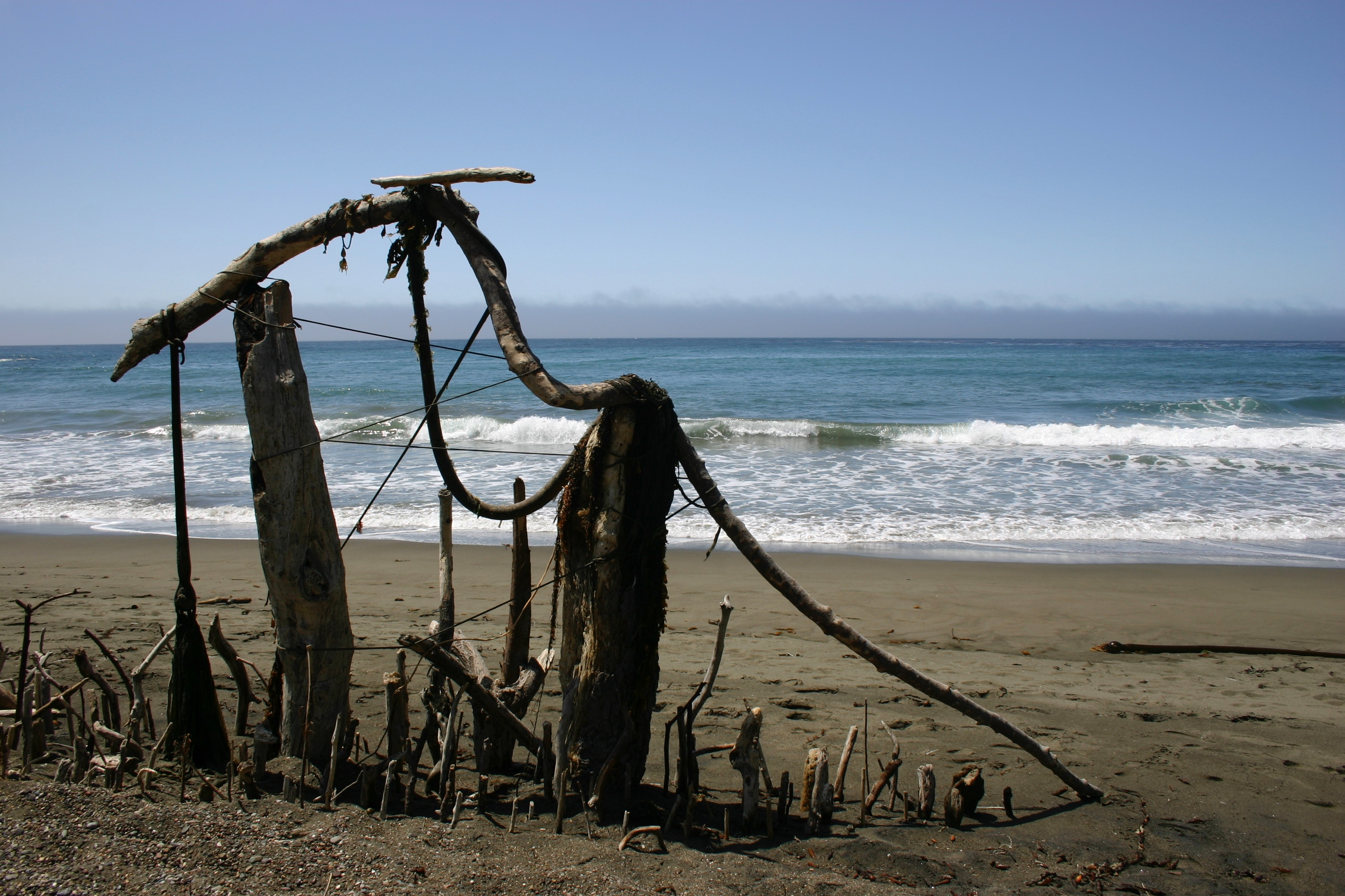 A fence constructed of driftwood, seaweed, and wire on the beach.