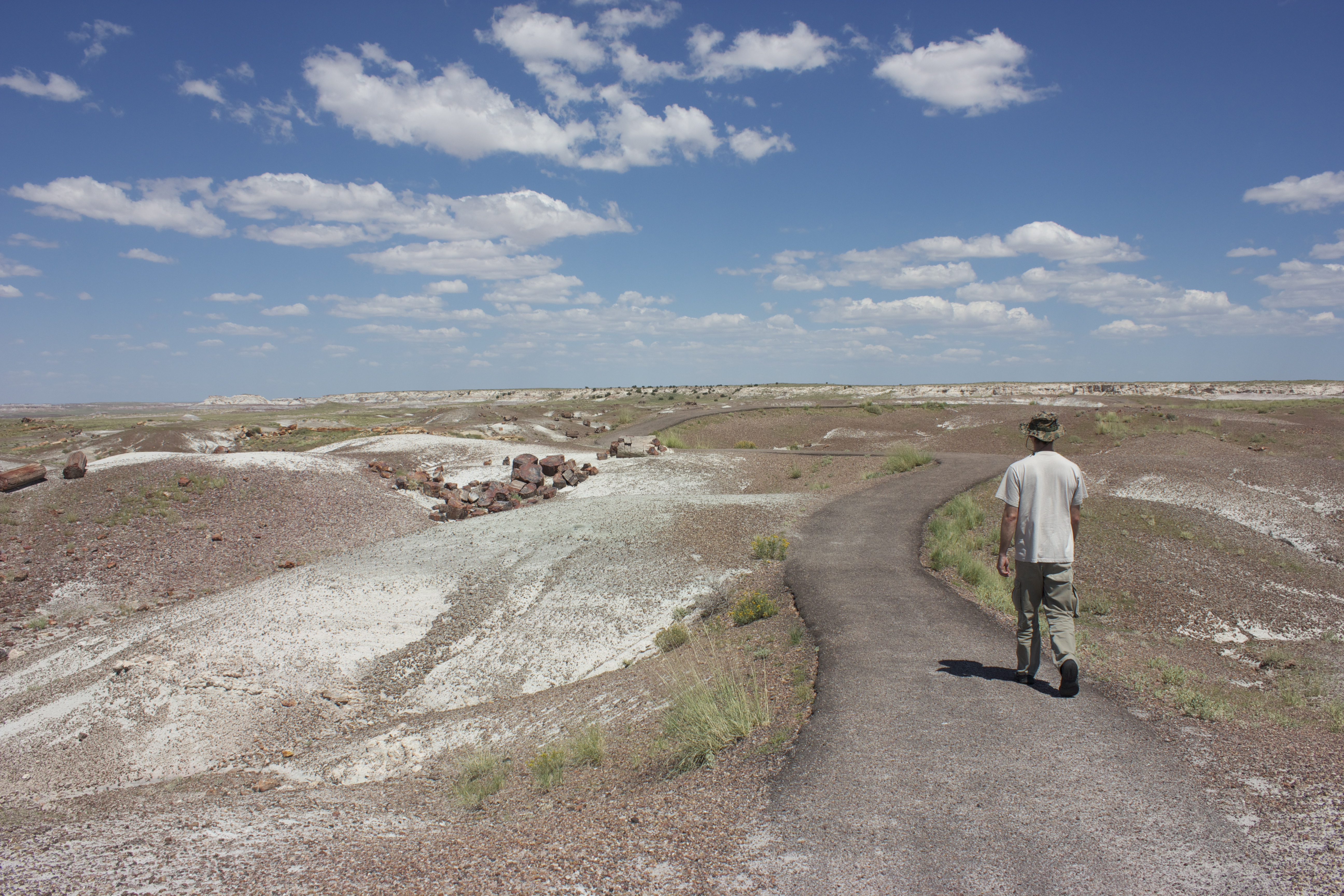 Petrified wood in this desolate landscape has been fossilized and turned to stone. A man walks a lonely road.