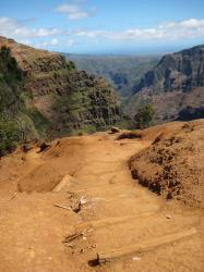 A rough stepped dirt pathway down into Waimea Canyon, also known as the Grand Canyon of the Pacific.