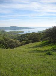 Green landscape in Pacheco State Park, California. I believe the body of water shown is the San Luis Reservoir.