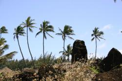 Hikina'akala Heiau. Remains of an ancient temple constructed from lava rocks.