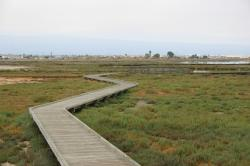 A zig-zaggy boardwalk on the salt marshes.