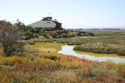 A colorful landscape and the stagnant green water of the salt marsh surround the Environmental Education Center in Alviso, California.