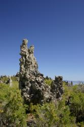 Tufa towers at Mono Lake.